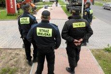 IV Liceum Ogólnokształcące w Gdańsku uruchamia klasę mundurową przygotowującą do pracy w straży miejskiej.