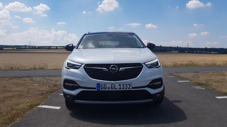 Długie cienkie skrzydełka na grillu to dziś znak rozpoznawczy samochodów marki Opel.