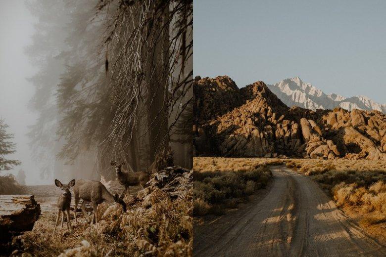 Zdjęcia Justyny Zduńczyk hipnotyzują. Po lewej - zwycięskie zdjęcie, po prawej - kalifornijski krajobraz