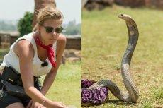 Marta Wierzbicka bez trudności poradziła sobie z jadowitym wężem.