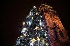 Polscy Łowcy Burz dają Polakom nadzieję na białe Święta.