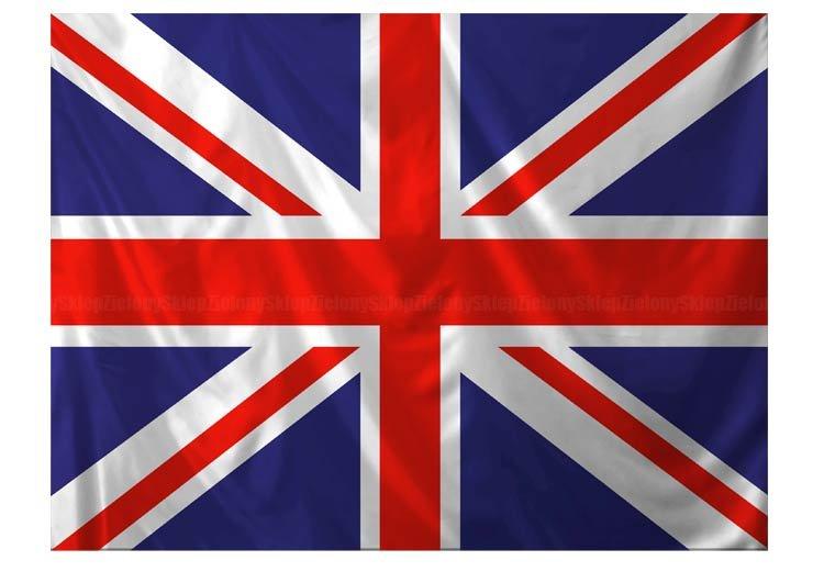 """Brytyjczycy wybrali """"wolność"""". Ale czy rzeczywiście wiedzieli co czynią?"""