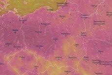 Trzy województwa otrzymały alerty dot. upałów.