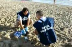 Służby pojawiły się na plaży już z samego rana.