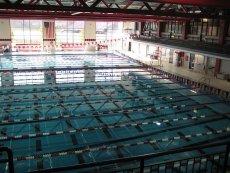 Zakaz korzystania z basenu przez kobiety podczas okresu to dobry pomysł ma swoich zwolenników.