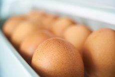 Jajka kosztują więcej niż kurczaki, a będzie jeszcze drożej.