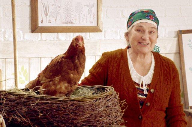 Lepsze jajka to szczęśliwej kury to mit.