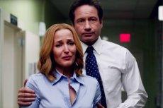 Już 10. sezon serialu nie przypadł do gustu fanom, ale 11. zaczął sięfatalnie.