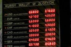 Jacek Bartkiewicz, członek zarządu NBP, nie sądzi, by w najbliższym czasie kurs franka uległ znacznemu obniżeniu