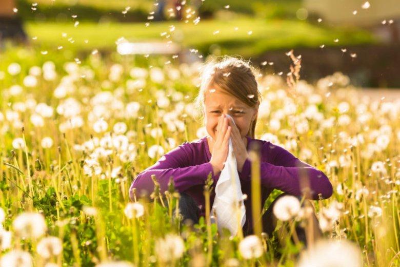 Alergie potrafią skutecznie uprzykrzyć życie. Ich objawy można jednak łagodzić