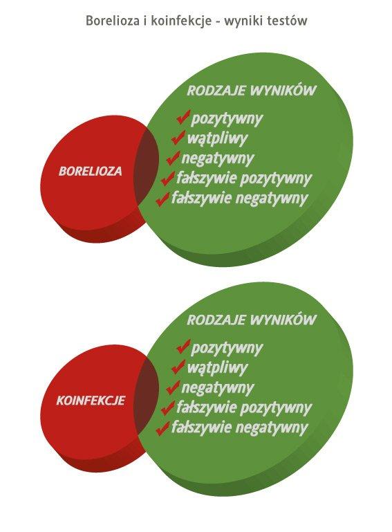 borelioza i koinfekcje - rodzaje wyników