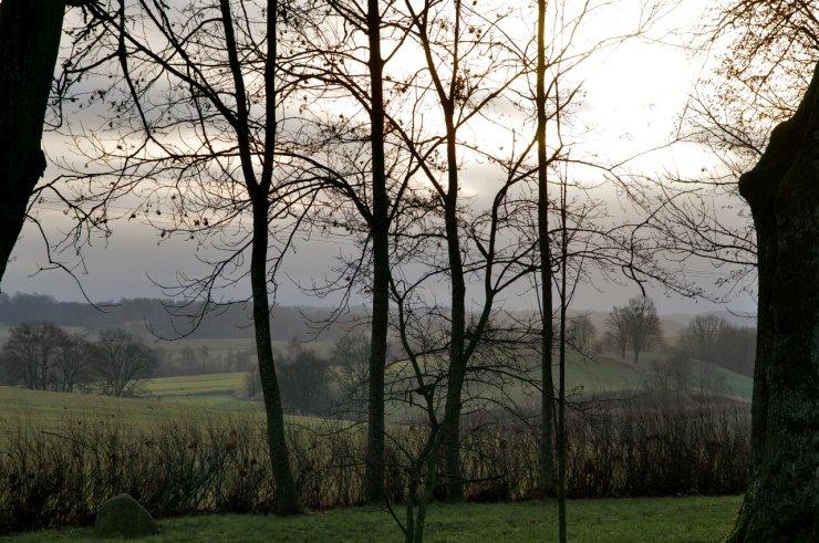 Widok z parku na okoliczne pola i łąki