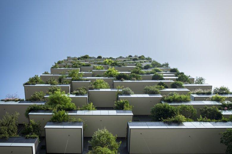 Dom pełen życia... szkoda, że dziś coraz mniej tak zielonych blokowisk.