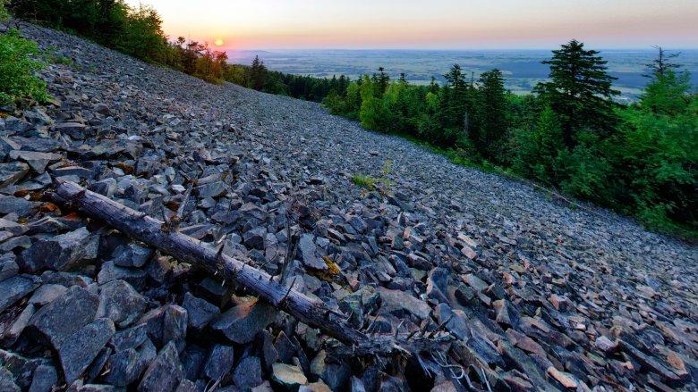 Gołoborza, czyli rumowiska skalne tworzące pełne ekspresji przestrzenie w gęstym lesie, można zobaczyć na Łysicy i Łysej Górze.