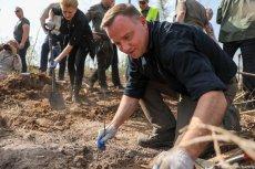 Prezydent Andrzej Duda i Agata Duda sadzili drzewa w Borach Tucholskich.