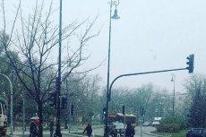Internet reaguje na pierwszy śnieg. Pada m.in. w Warszawie.