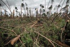 Meteorolodzy są oskarżeni o to, że na czas nie wydali ostrzeżenia przed huraganowym wiatrem.