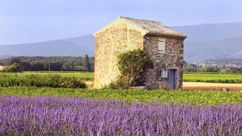 Problem, czy też może cały urok, Toskanii i Prowansji polega na tym, że i na żywo przypominają podrasowane zdjęcie ze stocka.