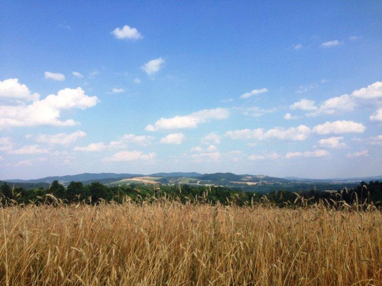 Dolny Śląsk przyciąga różnorodnością – tak historyczną, jak krajobrazową. W Kotlinie Jeleniogórskiej wypoczywali przed laty m.in. Chopin czy Goethe.
