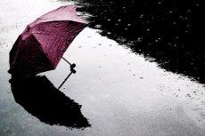 Parasol w zimny, deszczowy dzień