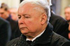 Gdzie pracował Grzegorz Tomaszewski?