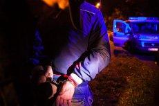 Do bójki pomiędzy studentami doszło podczas imprezy w Lublinie. Zdjęcie jest tylko ilustracją.