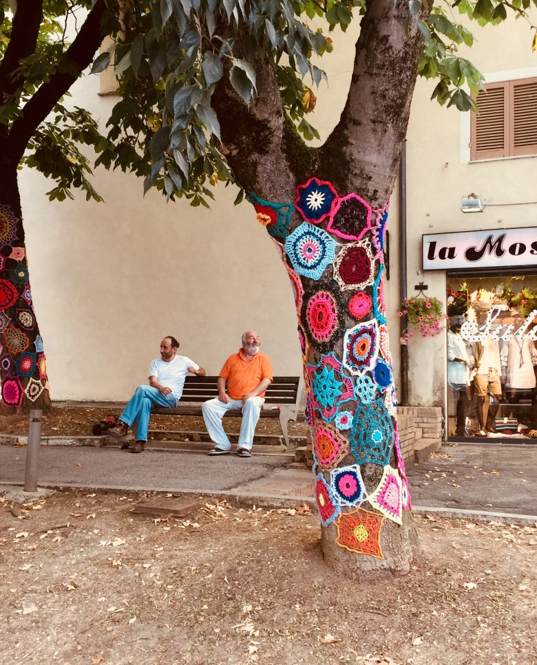Matalica i drzewa w sweterkach