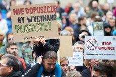 Komisja Europejska wkracza do gry o Puszczę Białowieską.