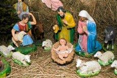 W amerykańskiej miejscowości Santa Monica tradycja bożonarodzeniowych szopek może zostać przerwana w związku z protestami ateistów, które poparł sąd federalny w Los Angeles.
