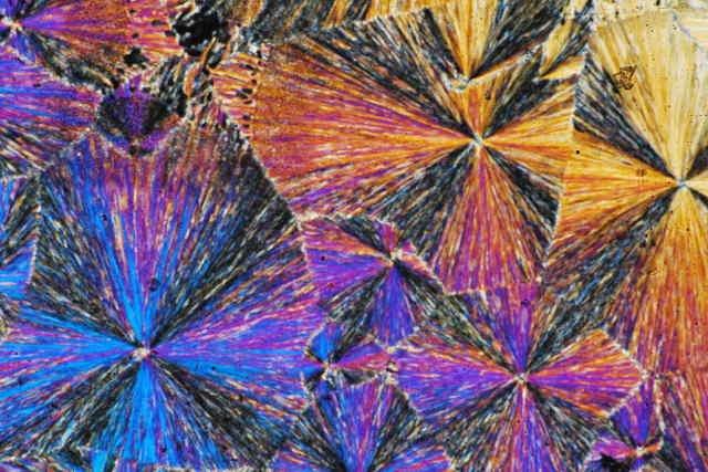 Ciekły kryształ pod mikroskopem