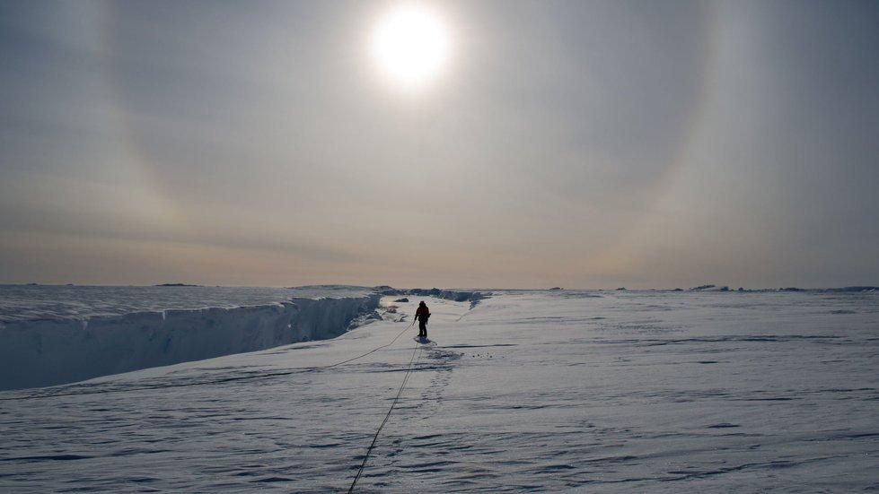 Antarktyda to najcichsze miejsce na świecie.