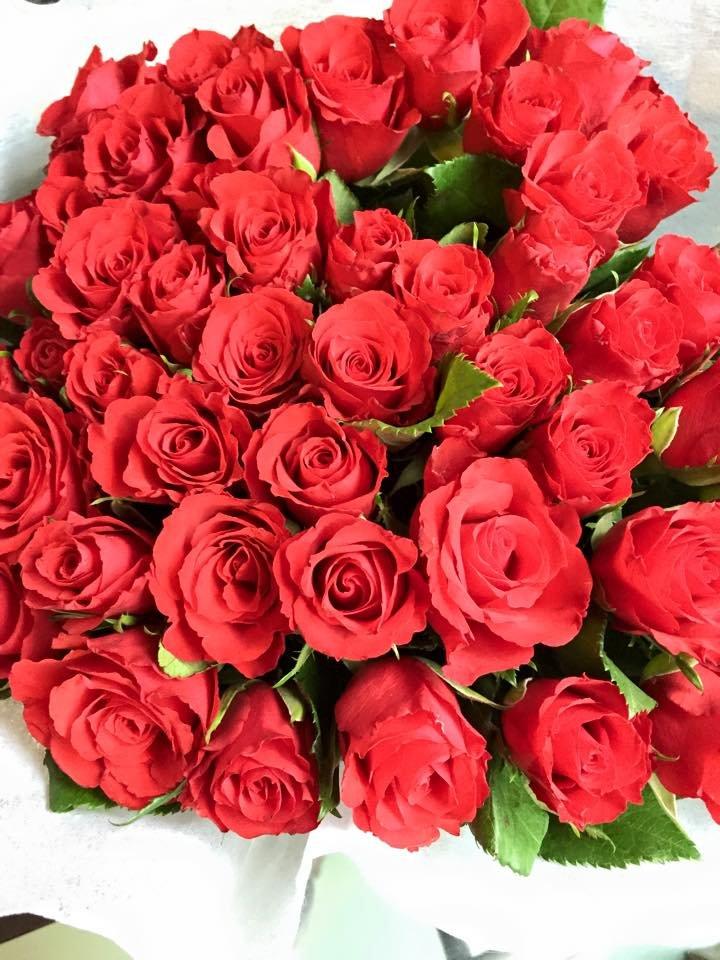 Róże, które dostałam na urodziny od swojego Chłopaka