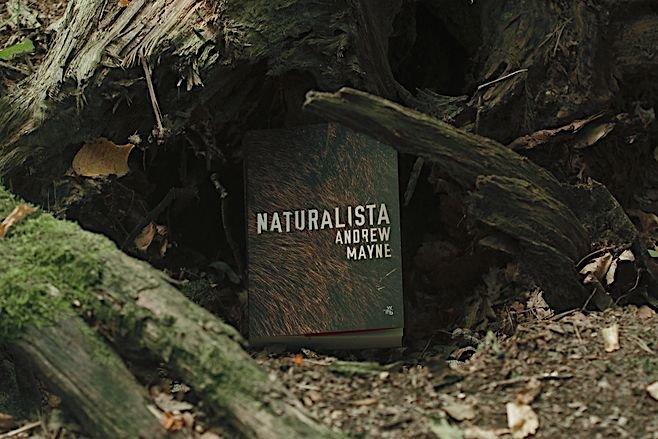 Jesteśmy za rozrzucaniem po naszych lasach tak ciekawych rzeczy.