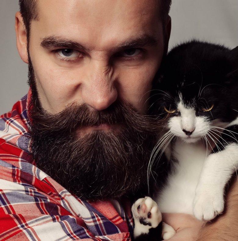 Małe kotki to ozdoba niejednej piwnicy.