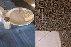 Kliencie biura podróży ITAKA narzekają na wakacje last minute w hotelu Dar El Manara na tunezyjskiej Djerbie.