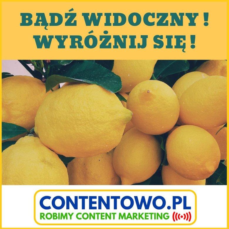 Contentowo.pl Content marketing B2B