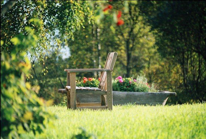 Wiosna w ogrodzie siedliska.