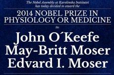 Laureatami tegorocznej Nagrody Nobla w dziedzinie medycyny zostali John O'Keefe, May-Britt Moser i Edvard Moser