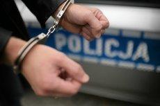 Policja zakuła w kajdanki dziennikarkę Trójki Annę Rokicińską na oczach dzieci, po czym przyznała, że była to pomyłka.