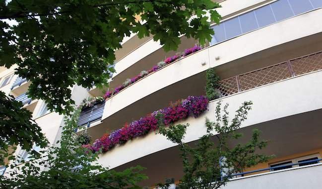 W Warszawie organizowany jest co roku konkurs na najpiękniejszy balkon. W zeszłym roku wygrał ten należący do Jarosława Jelonka.