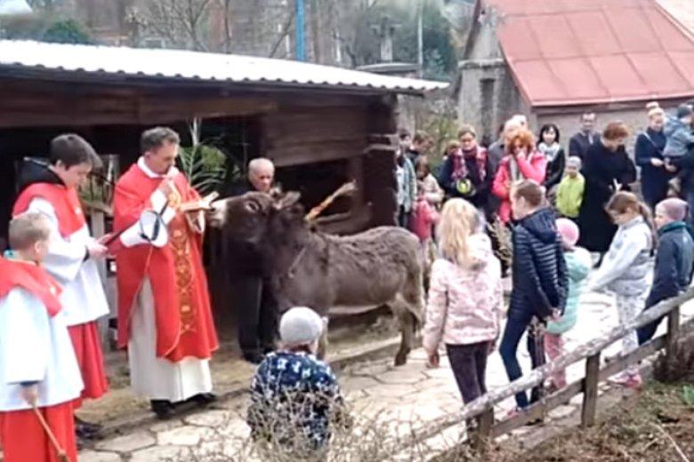 Ksiądz Maciej Oliwa też w 2017 roku wjechał do kościoła na ośle.