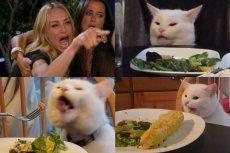 Smudge to kot, który najwyraźniej gardzi warzywami. Stał się bohaterem popularnego formatu memów i gwiazdorem Instagrama