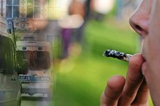 24-latek w Krakowie sam pochwalił się policjantom, że pali marihuanę.