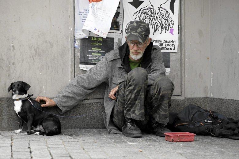 """Bezdomny z psem """"zarobi"""" więcej"""