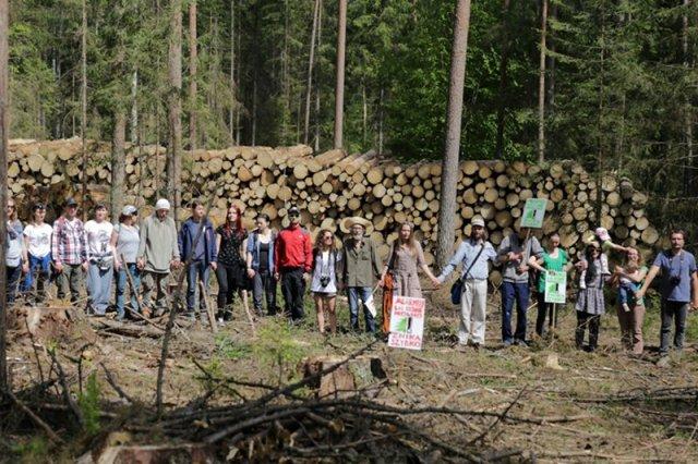 Ekolodzy bronią Puszczy Białowieskiej. Tymczasem leśnicy oskarżają, jednego z aktywistów o napaść.