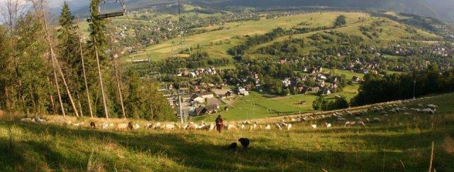Na Harendzie mieszkałam tylko chwilkę. Teraz mam widok na to wzgórze.