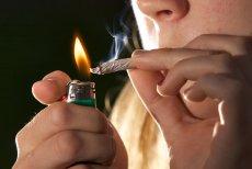 Do legalizacji rekreacyjnej marihuany tylko jeden krok? I tak i nie.
