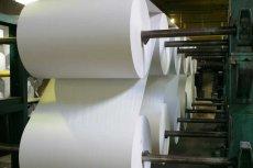 Portugalczycy stworzyli papier, który po zużyciu można zasiać.