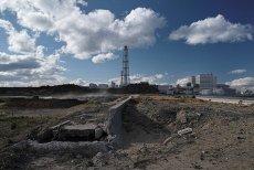 Raport ONZ: Ani jednego przypadku zachorowania po awarii elektrowni atomowej w Fukushimie.