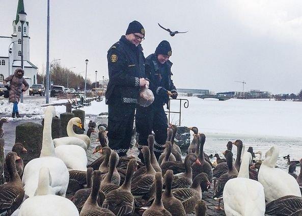 Policja może być sympatyczna - taki wizerunek kreują na Instagramie islandzkie służby mundurowe.
